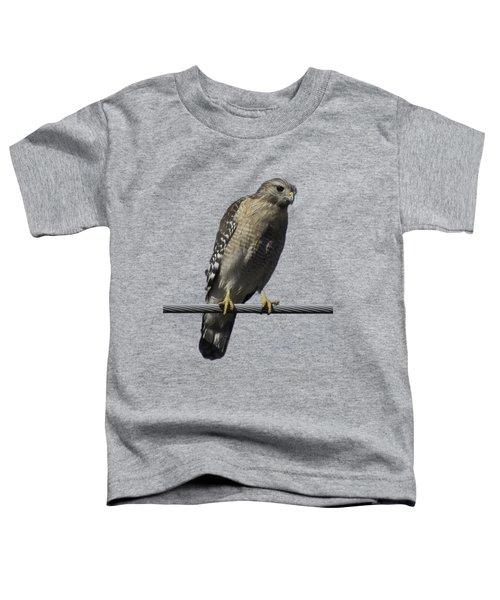 Red-shouldered Hawk Transparency Toddler T-Shirt