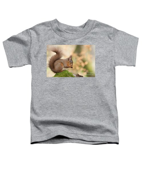 A Moment Of Meditation - Red Squirrel #27 Toddler T-Shirt