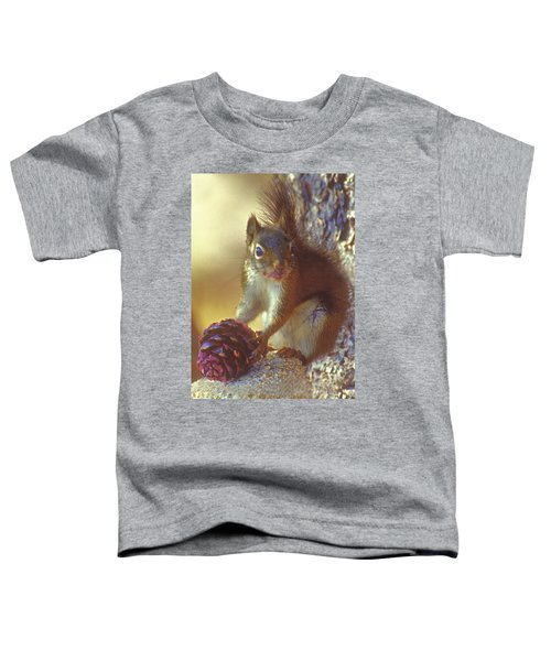 Red Squirrel With Pine Cone Toddler T-Shirt