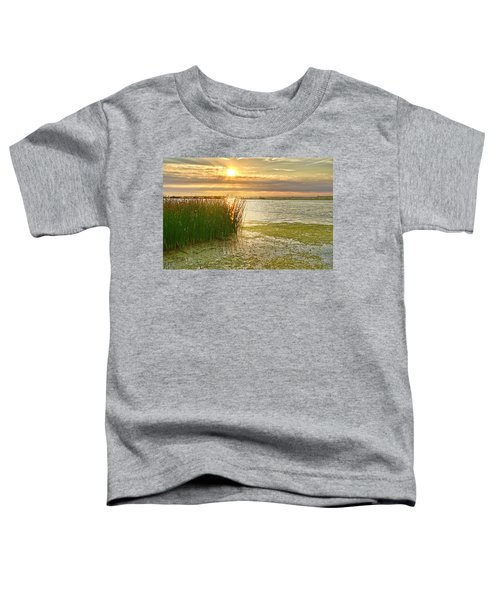 Reeds In The Sunset Toddler T-Shirt