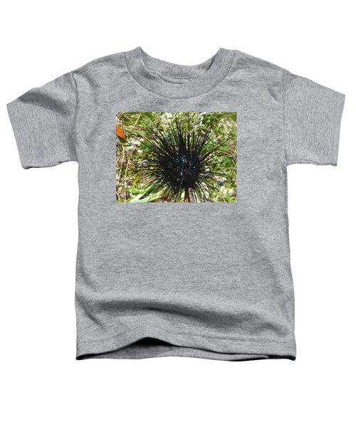 Reef Life - Sea Urchin 1 Toddler T-Shirt