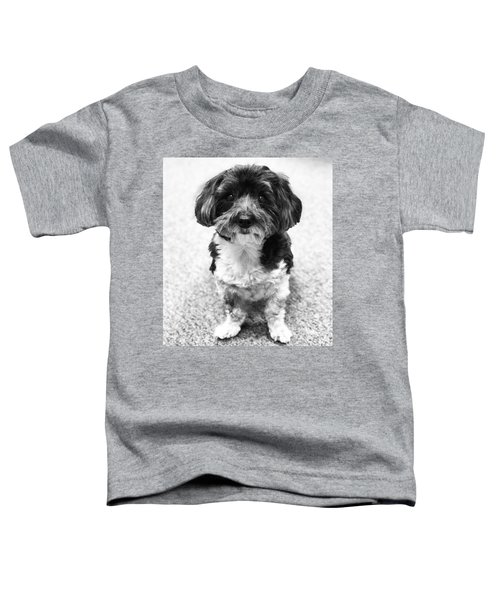 Reggie Toddler T-Shirt