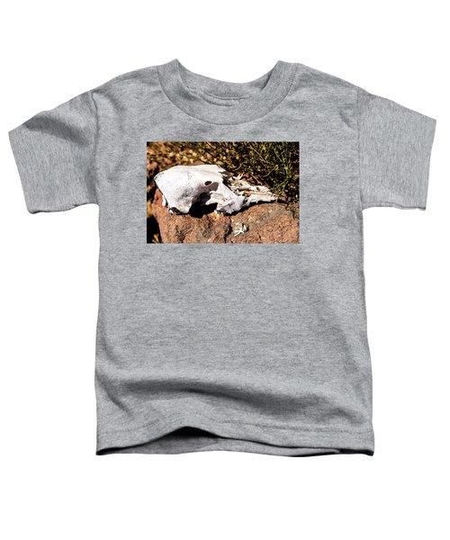 Reversal Of Fortune Toddler T-Shirt