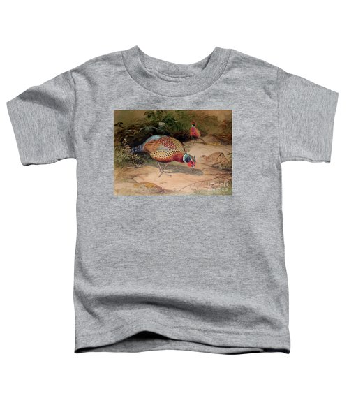 Ring Necked Pheasant Toddler T-Shirt by Joseph Wolf