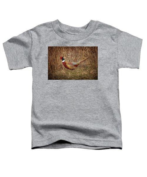 Ring Necked Pheasant Toddler T-Shirt