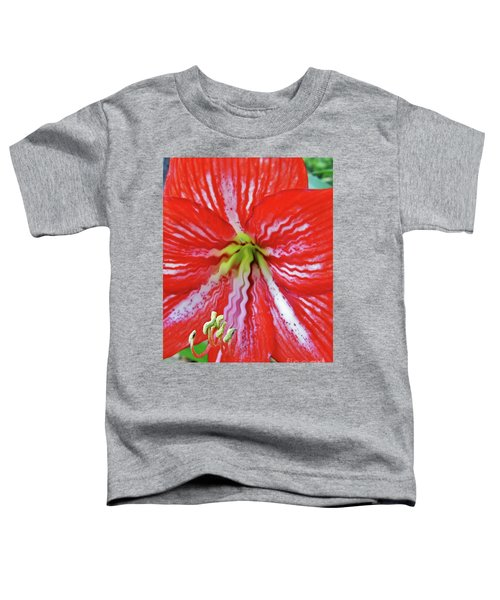 Ripple Amaryllis Toddler T-Shirt