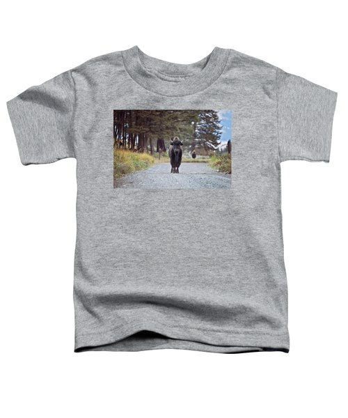 Roadblock Toddler T-Shirt