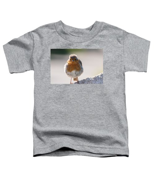 Robin Front Toddler T-Shirt