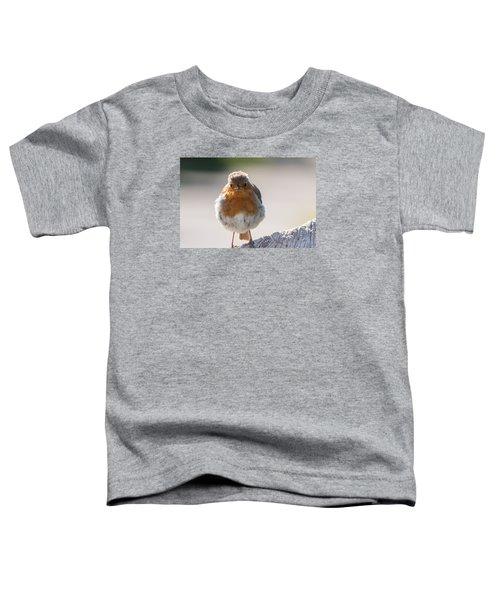 Robin Front Toddler T-Shirt