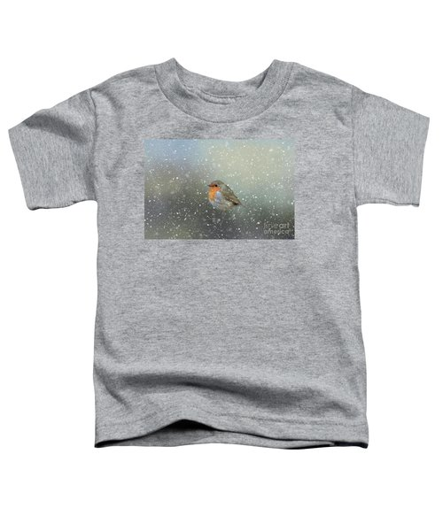 Robin In Winter Toddler T-Shirt