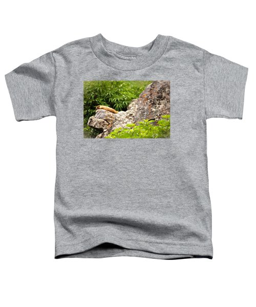 Rock Chuck Toddler T-Shirt by Lana Trussell