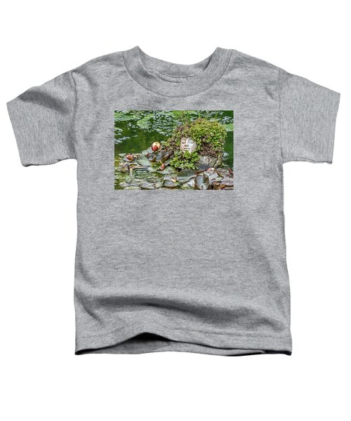 Rock Face Revisited Toddler T-Shirt