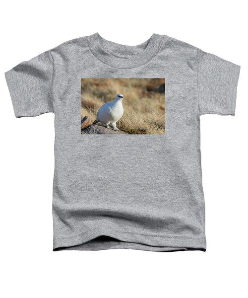 Rock Ptarmigan Toddler T-Shirt