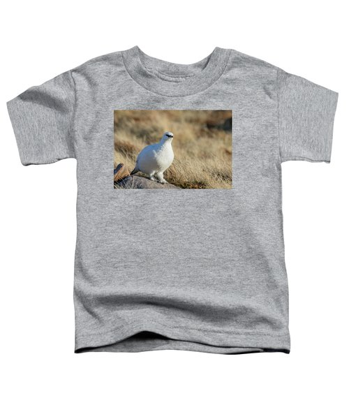 Rock Ptarmigan Toddler T-Shirt