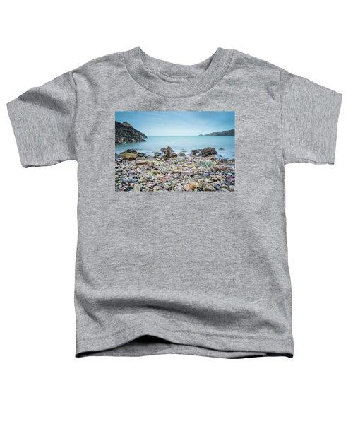 Rocky Beach Toddler T-Shirt