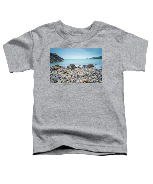 Rocky Beach Toddler T-Shirt