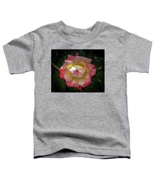 Rose From Mable Ringling's Garden Toddler T-Shirt