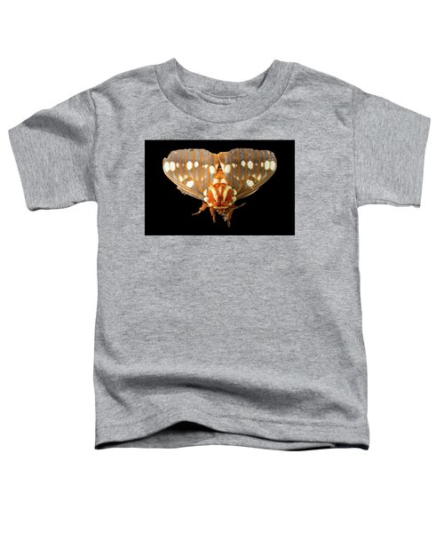 Royal Walnut Moth On Black Toddler T-Shirt