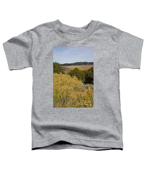 Rt 72 Utah Toddler T-Shirt