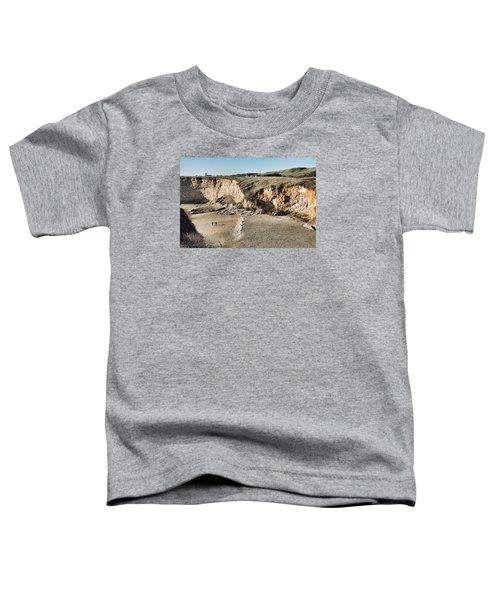 Rugged Coastline Toddler T-Shirt