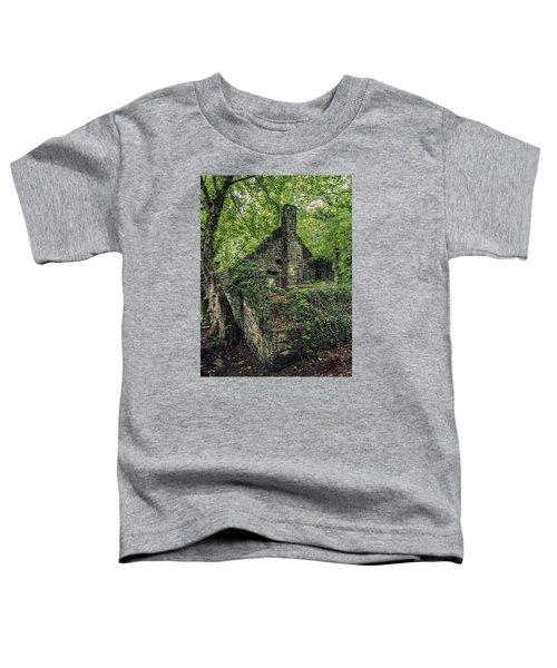 Run Down Mill Toddler T-Shirt