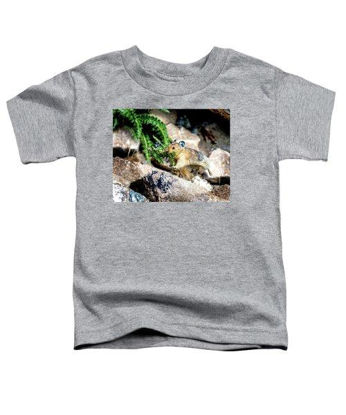 Run Run Little Pika Toddler T-Shirt
