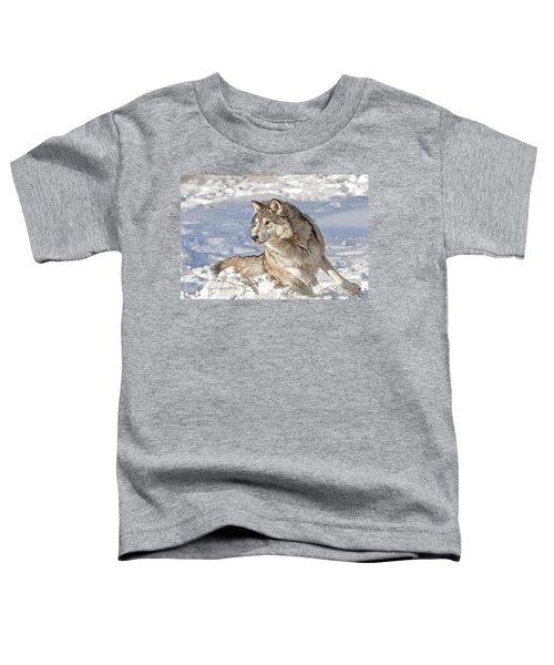 Running Wolf Toddler T-Shirt
