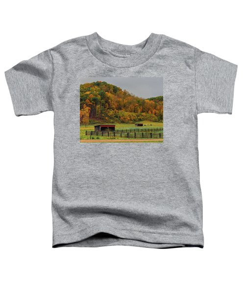 Rural Beauty In Ohio  Toddler T-Shirt