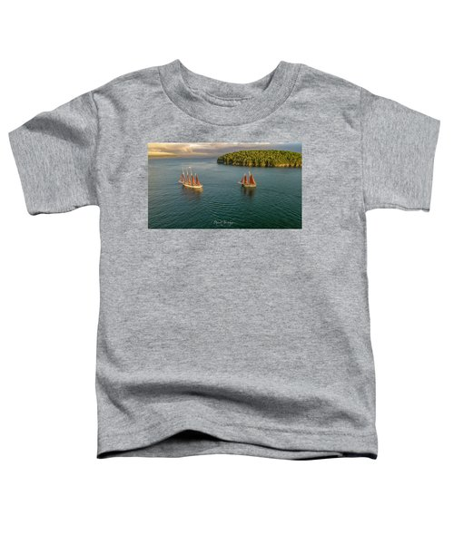 Sailing Frenchman Bay Toddler T-Shirt