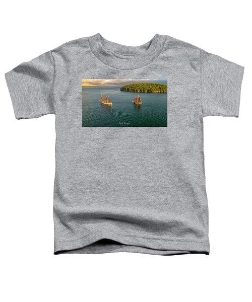 Sailing Frenchman Bay Toddler T-Shirt