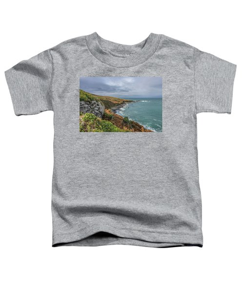 Saint Ives 1 Toddler T-Shirt
