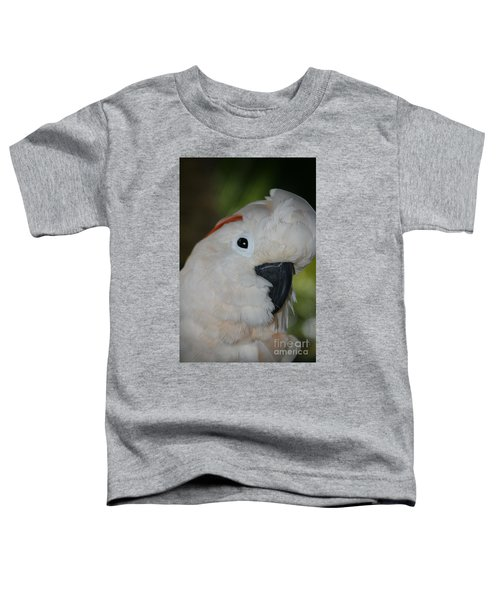 Salmon Crested Cockatoo Toddler T-Shirt by Sharon Mau
