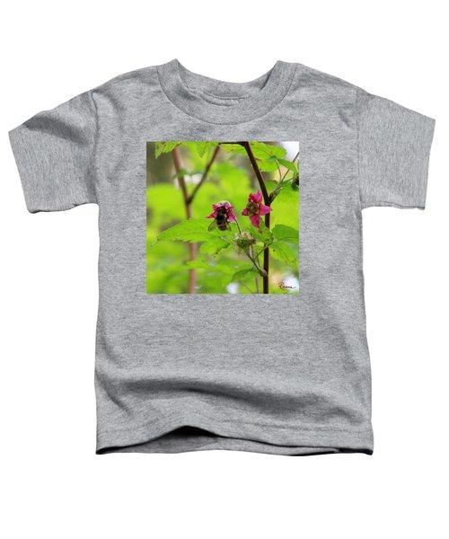 Salmonberry Honey Toddler T-Shirt