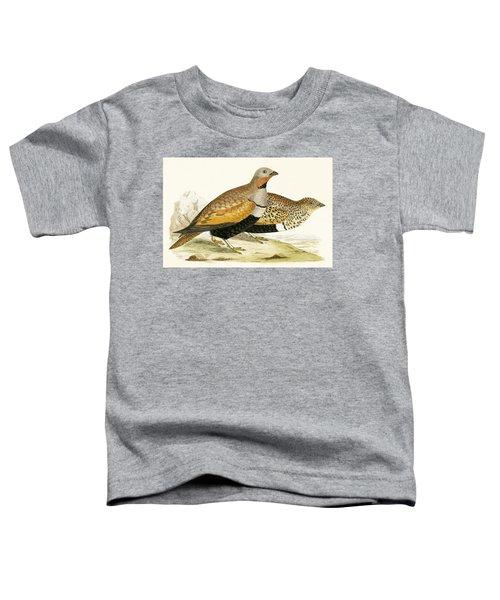 Sand Grouse Toddler T-Shirt