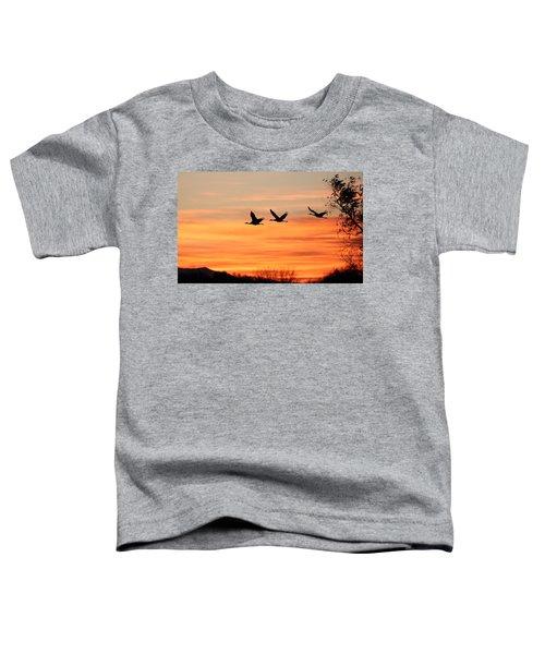 Sandhill Sunrise Toddler T-Shirt