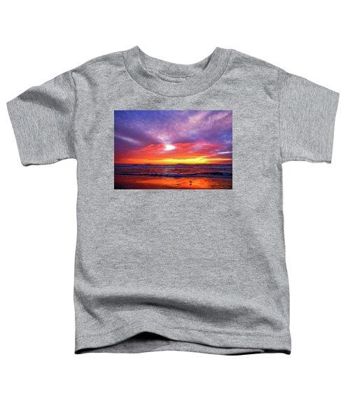Sandpiper Sunset Ventura California Toddler T-Shirt