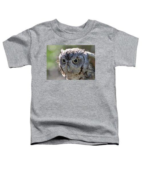 Screechowl Focused On Prey Toddler T-Shirt