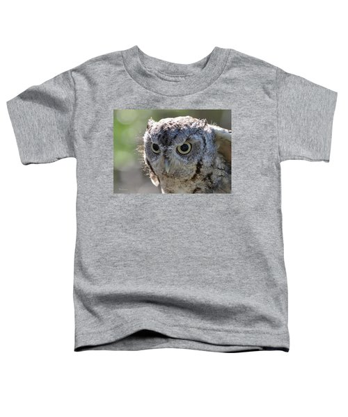 Screechowl Focused On Prey Toddler T-Shirt