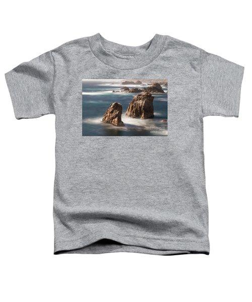 Sea Stacks  Toddler T-Shirt