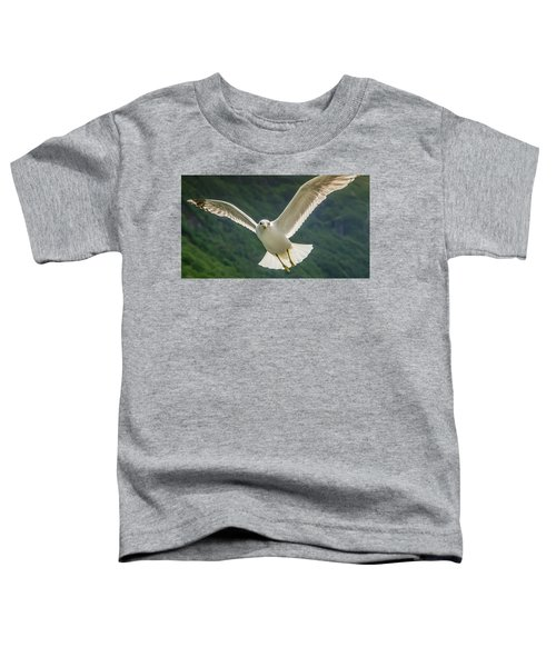Seagull At The Fjord Toddler T-Shirt