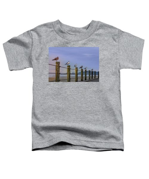 Seagull Lineup Toddler T-Shirt
