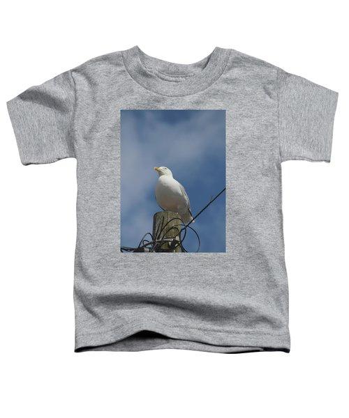 Seagull Perching. Toddler T-Shirt