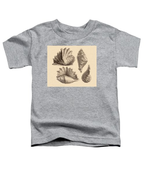 Toddler T-Shirt featuring the painting Seba's Spider Conch by Judith Kunzle