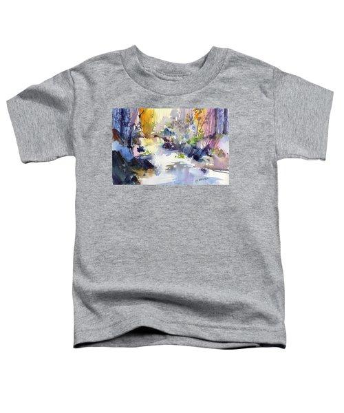Secret Falls Toddler T-Shirt