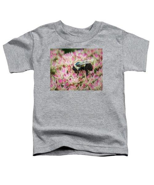 Toddler T-Shirt featuring the photograph Sedum Bumbler by Bill Pevlor