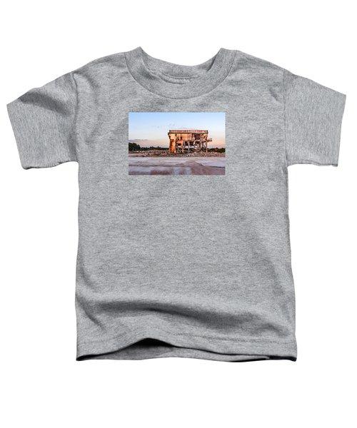 Seen Better Days Toddler T-Shirt