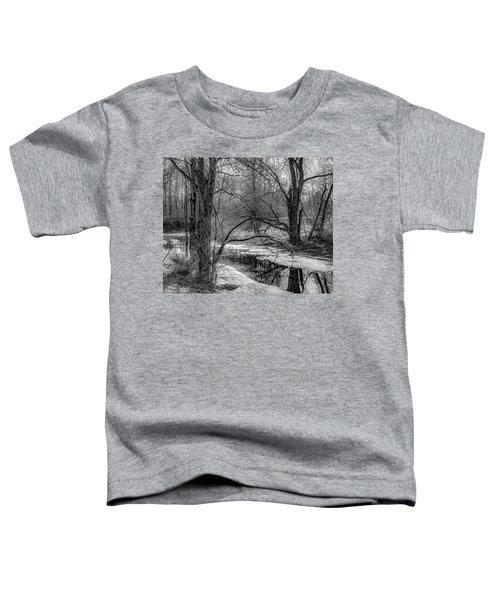 Set On Defrost Toddler T-Shirt
