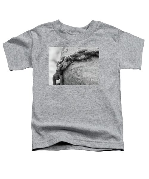Shades Of Gray Toddler T-Shirt