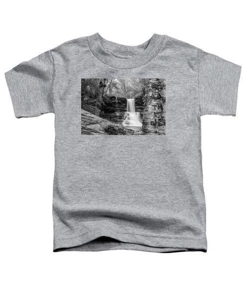 Sheldon Reynolds Falls - 8581 Toddler T-Shirt
