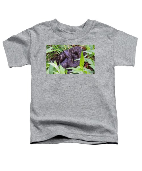 Shhhh1 Toddler T-Shirt